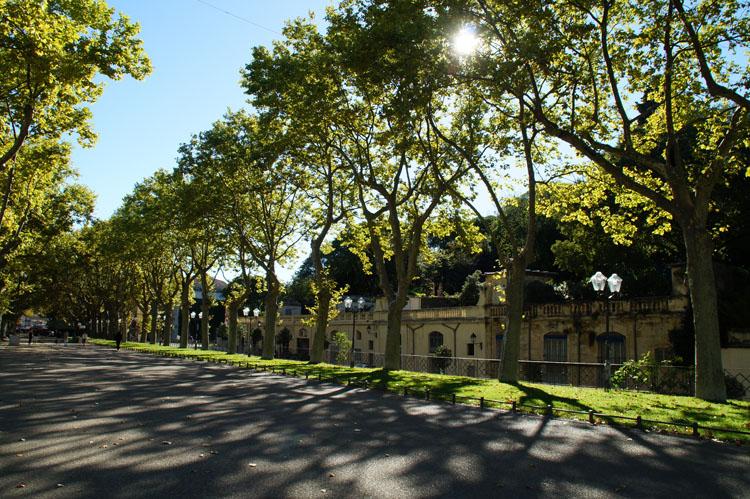 Montpellier_60_020
