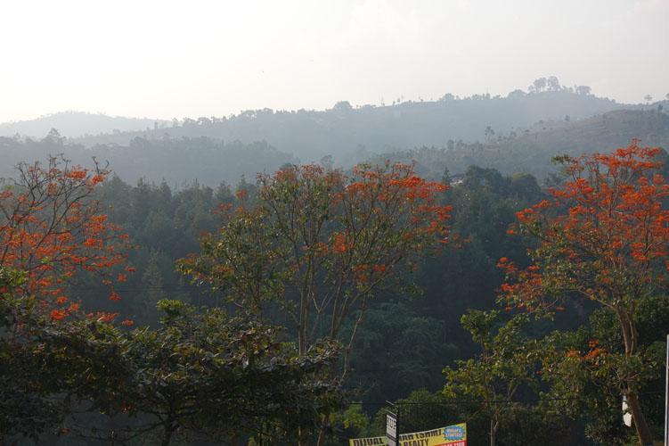 Bandung_167_042