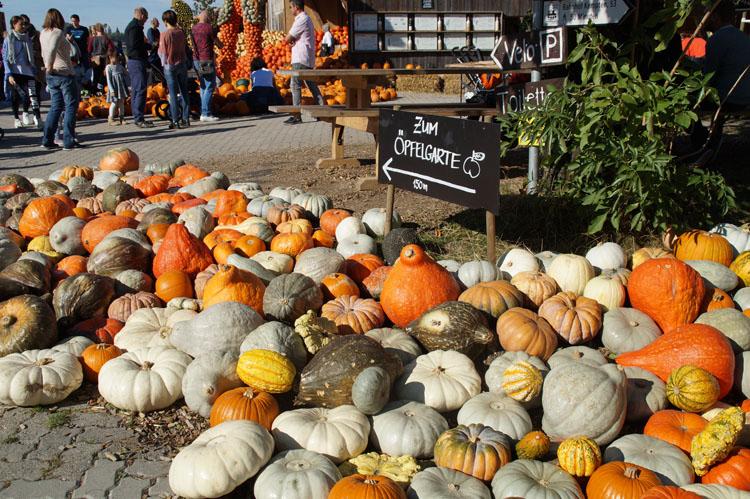 pumpkin_189_004