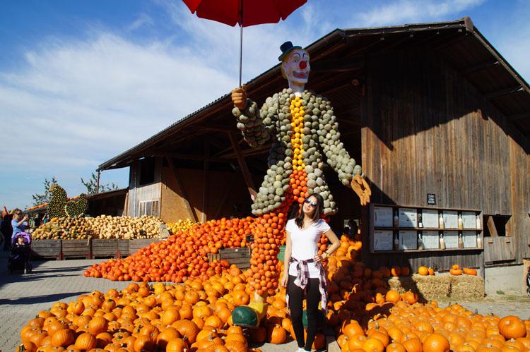 pumpkin_189_012