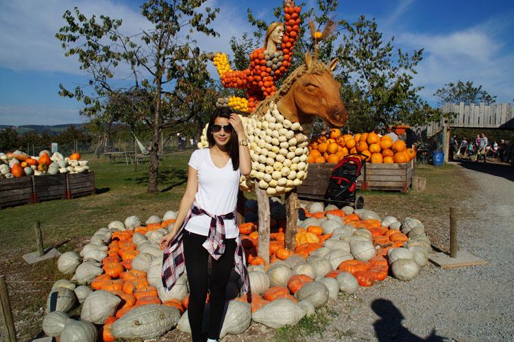 pumpkin_189_018