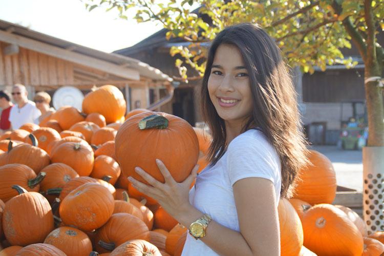 pumpkin_189_025