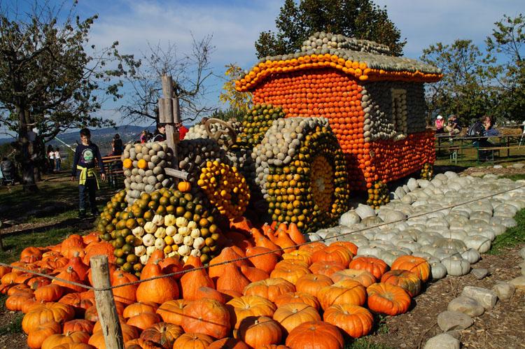 pumpkin_189_028