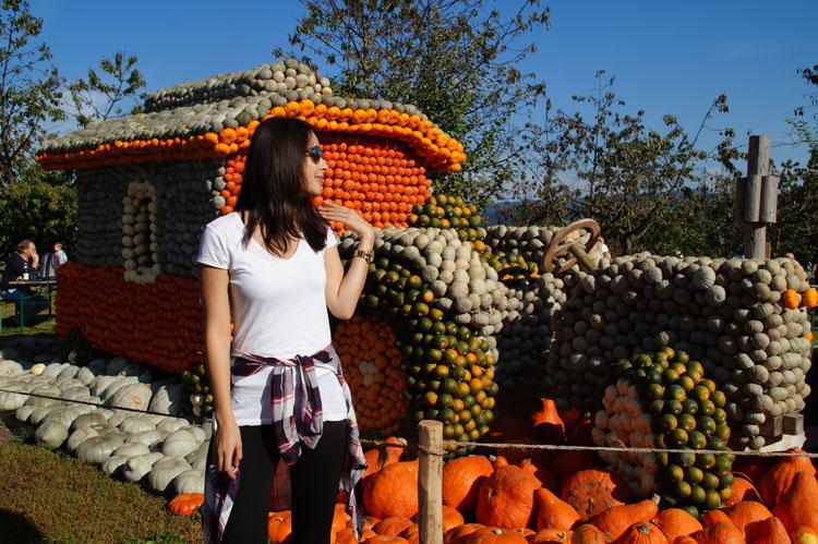 pumpkin_189_034