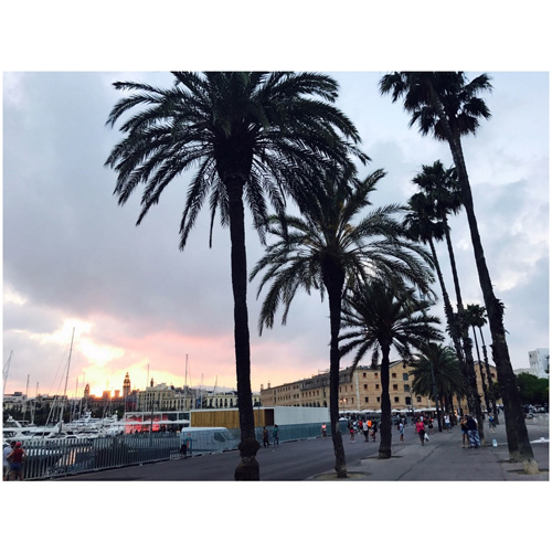 barcelona_30_240